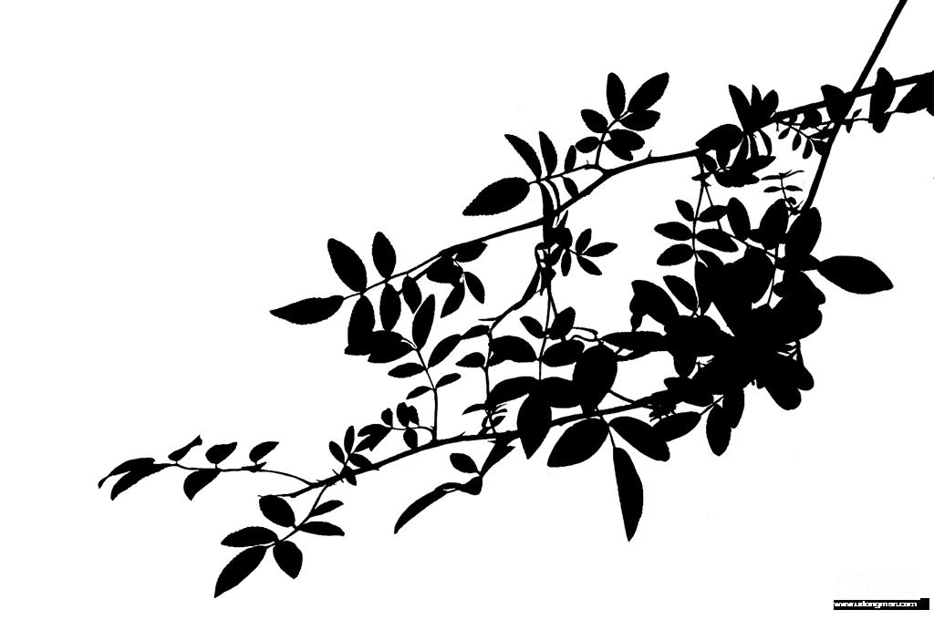 植物剪影素材 - 优动漫 动漫创作支援平台