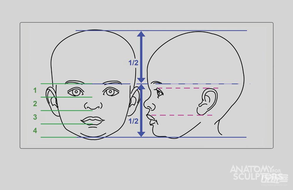 标签:脸部头部结构 4139 阅览量 0 评论数 评论 还可以输入500个字
