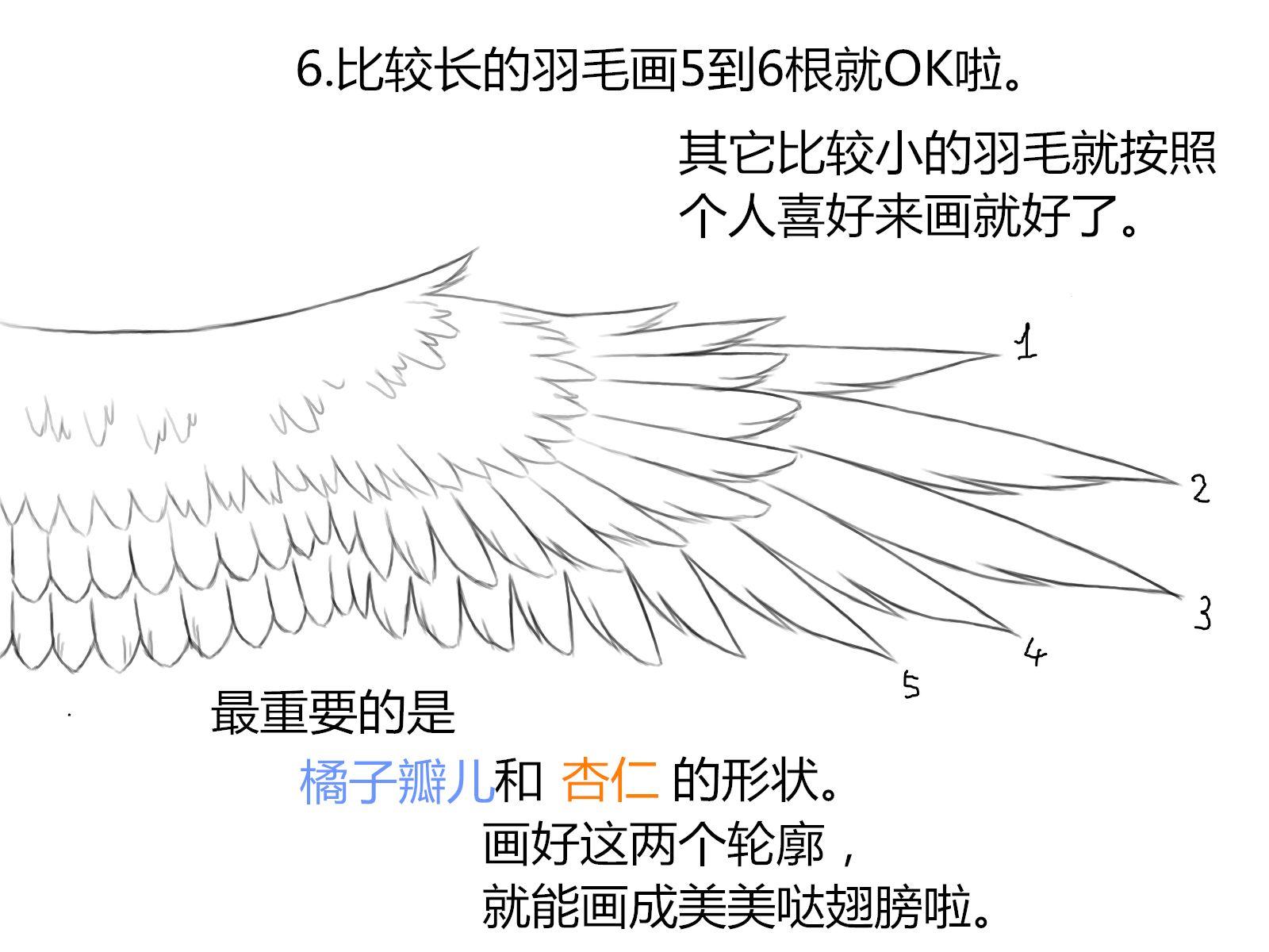 天使翅膀的画法教程分享展示