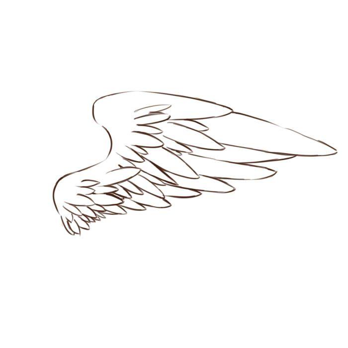 如何画翅膀教程简易版