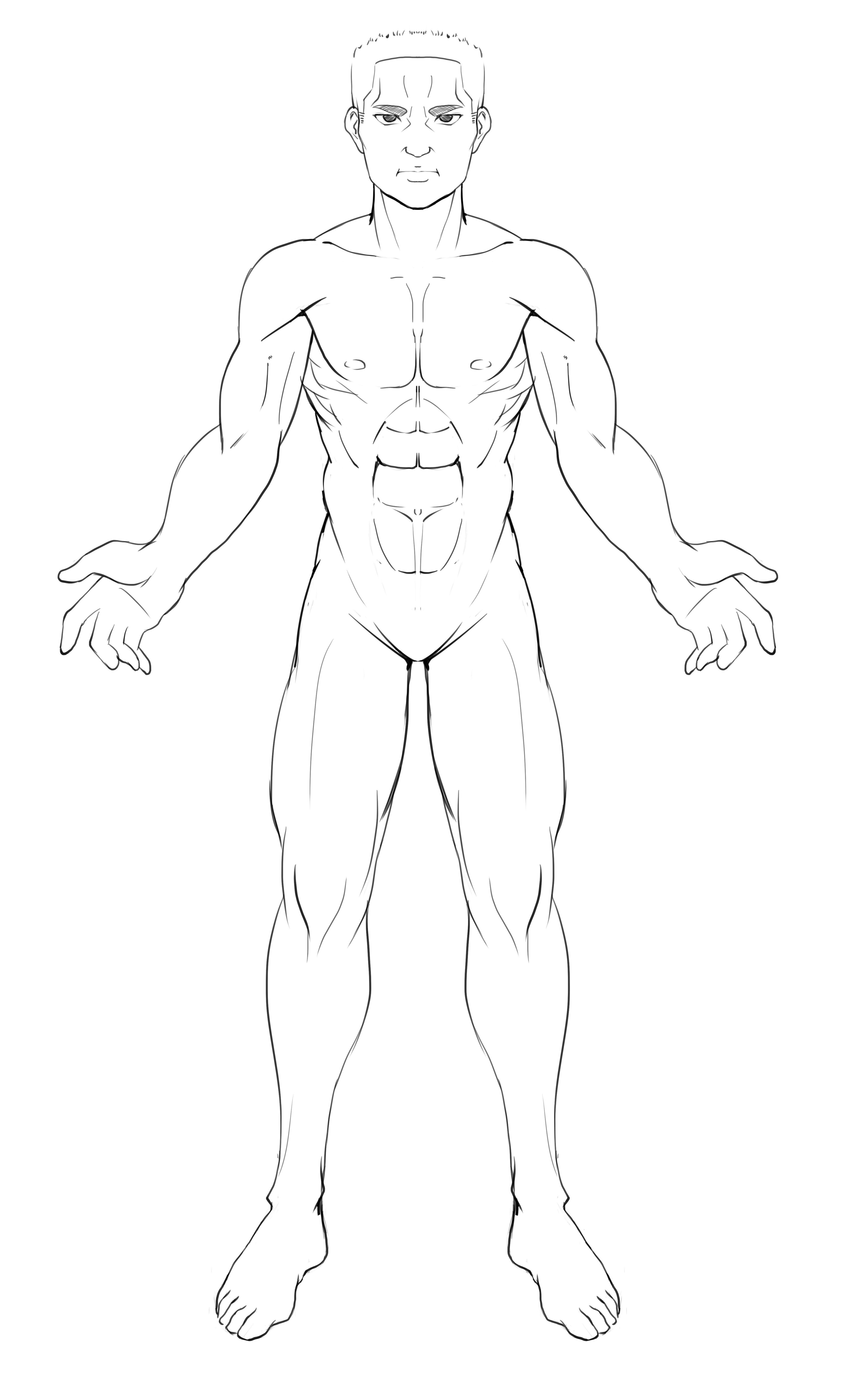 肌肉简笔画图片大全