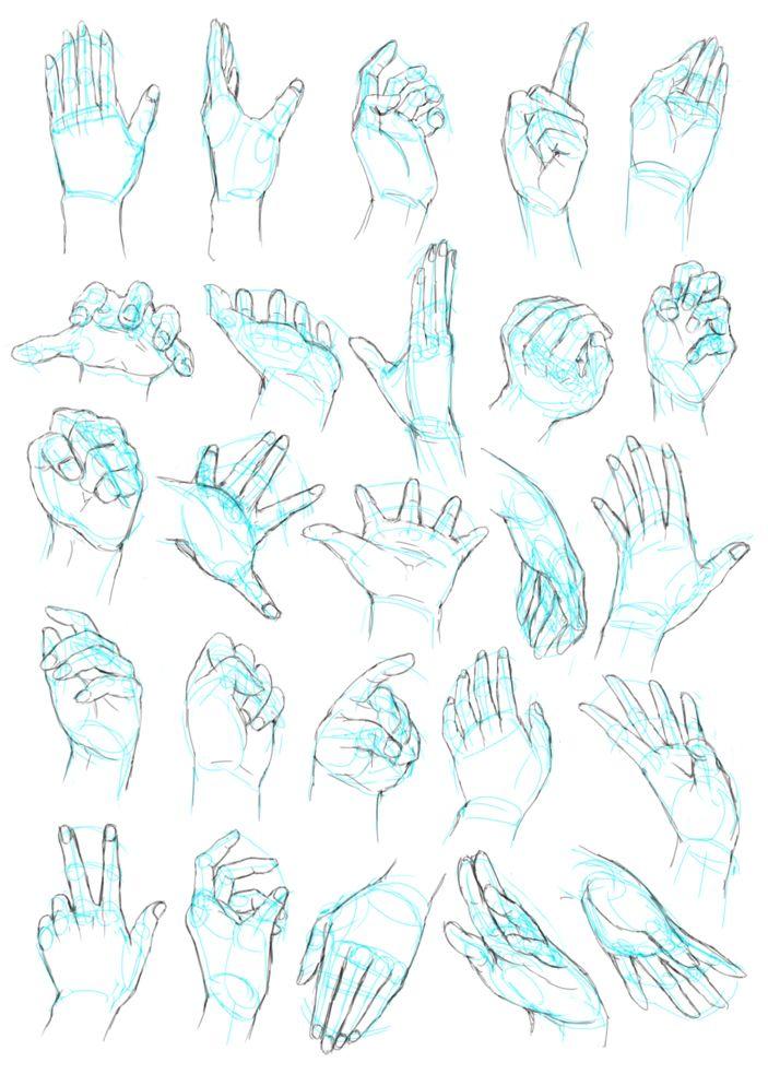 手部绘画教程 - 优动漫 动漫创作支援平台