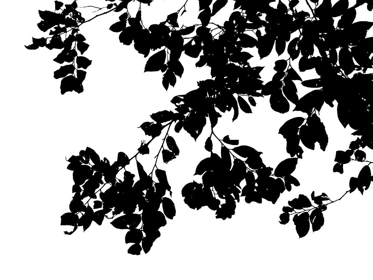 树剪影素材——第一弹 - 优动漫 动漫创作支援平台