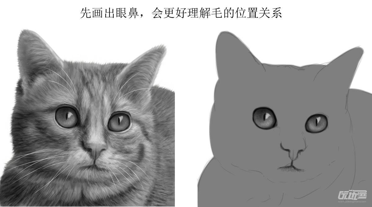 壁纸 动物 猫 猫咪 小猫 桌面 1200_667