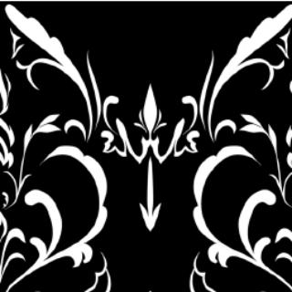 大马士革花纹b(黑底白花)_pb0034 - 优动漫 动漫创作