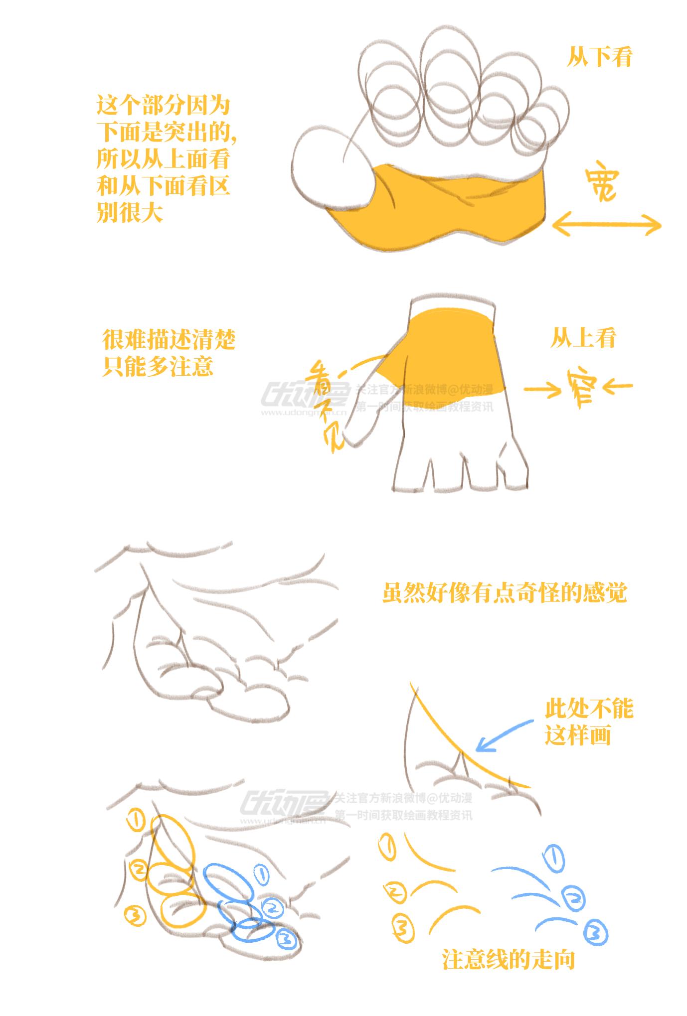 手部画法教程4.png