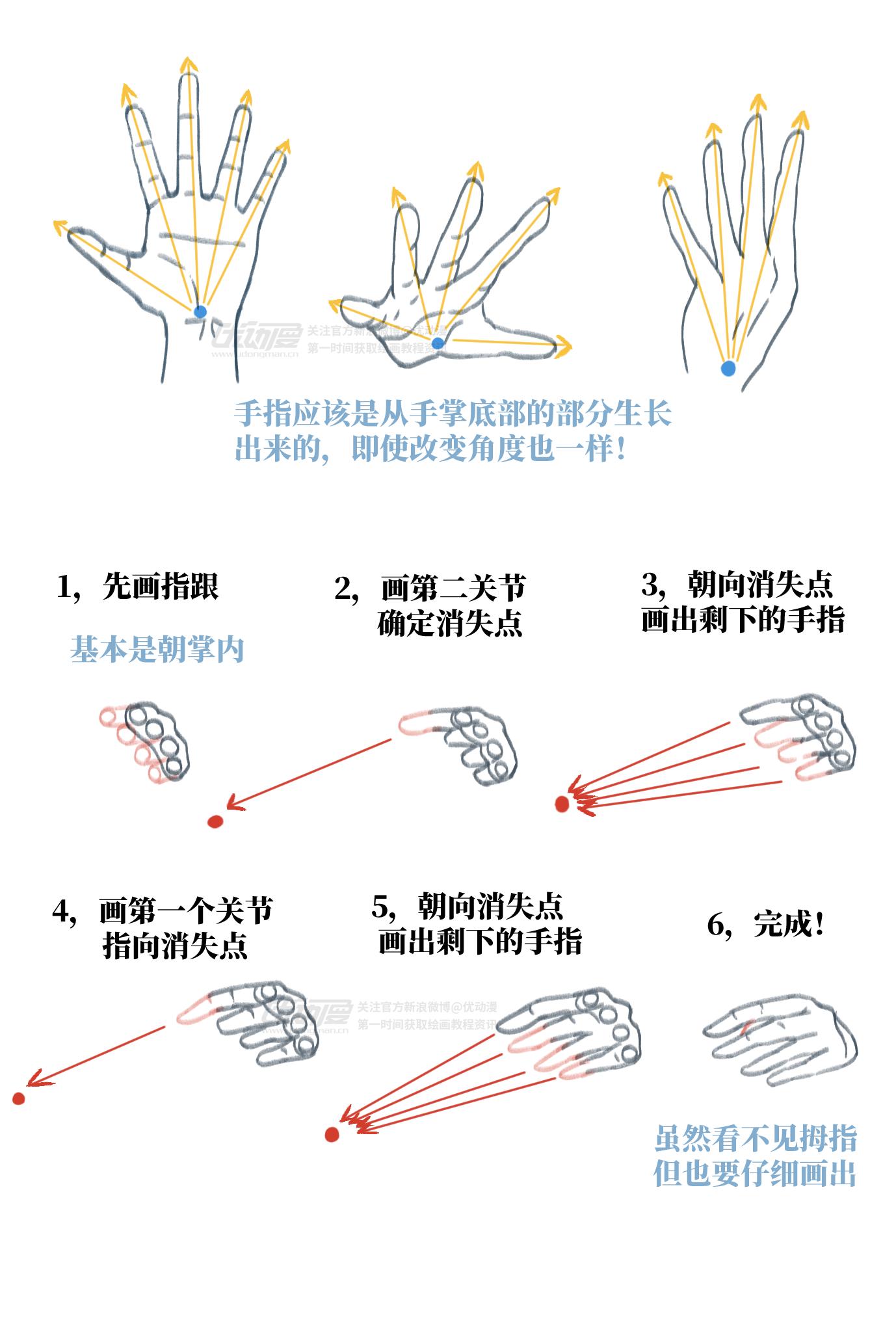 手的基础画法3.png