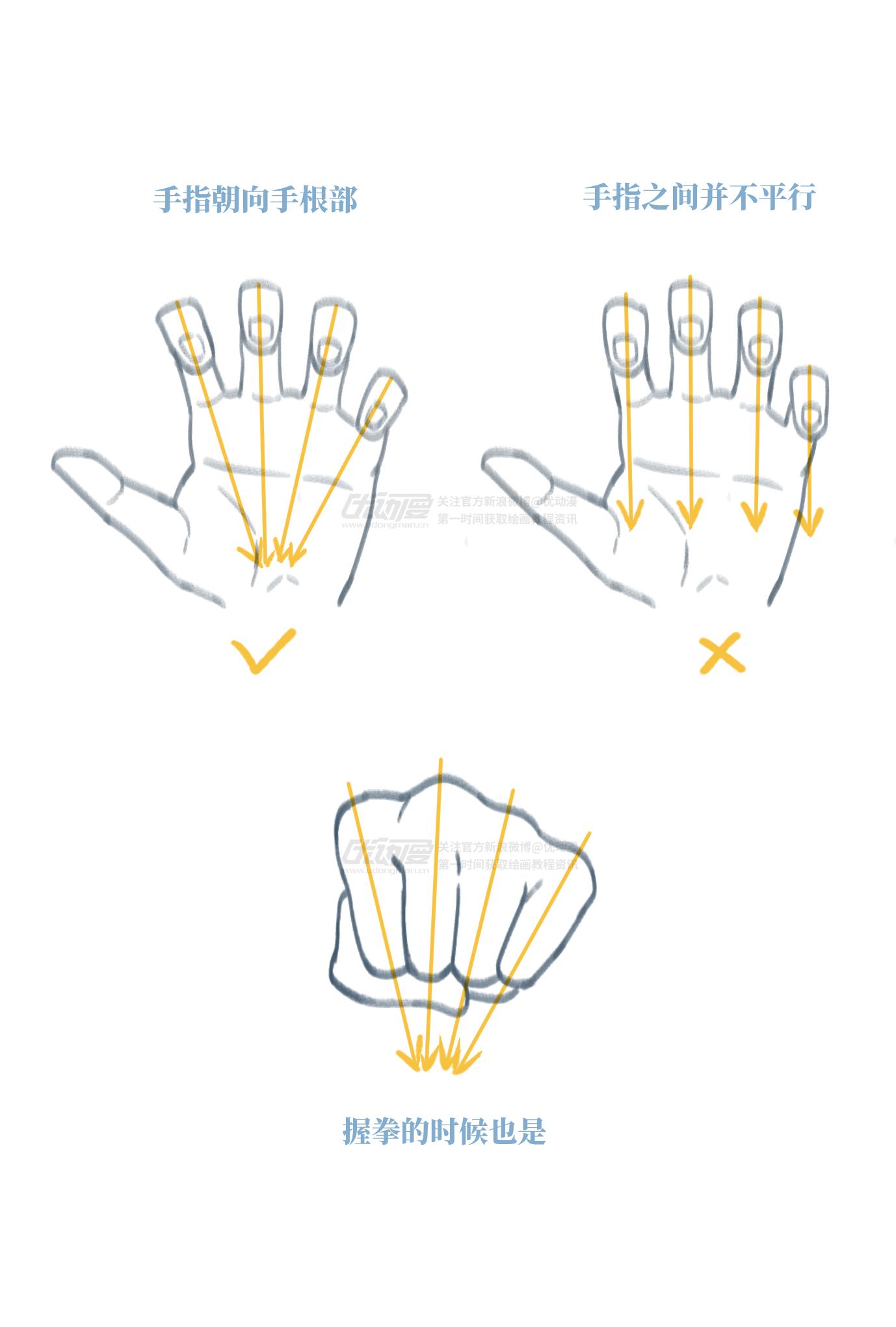 手的基础画法5.png