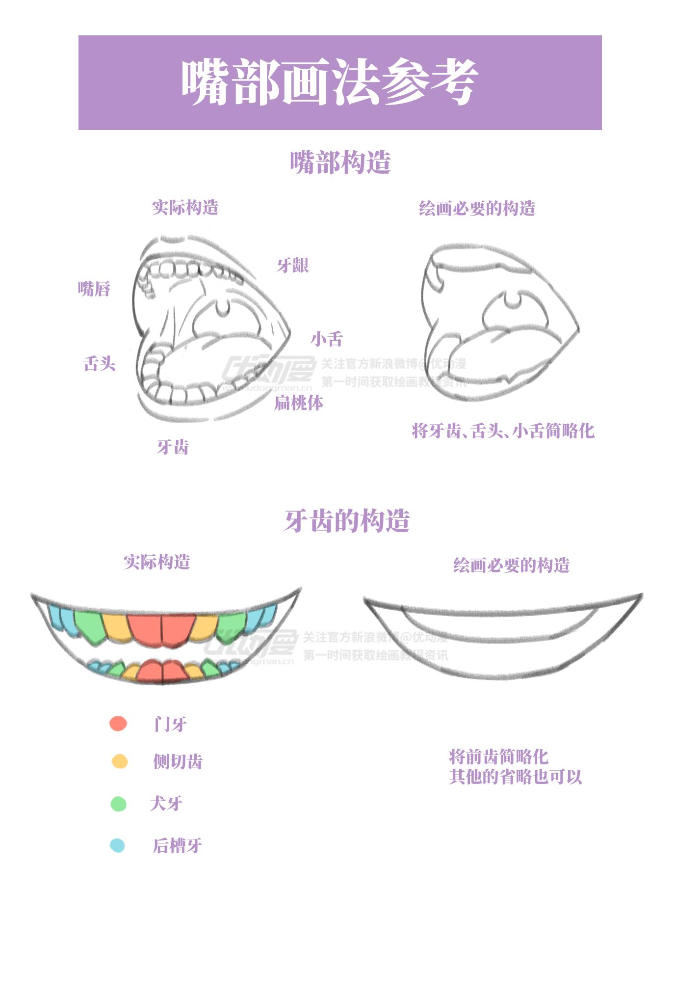 嘴部画法参考1.png