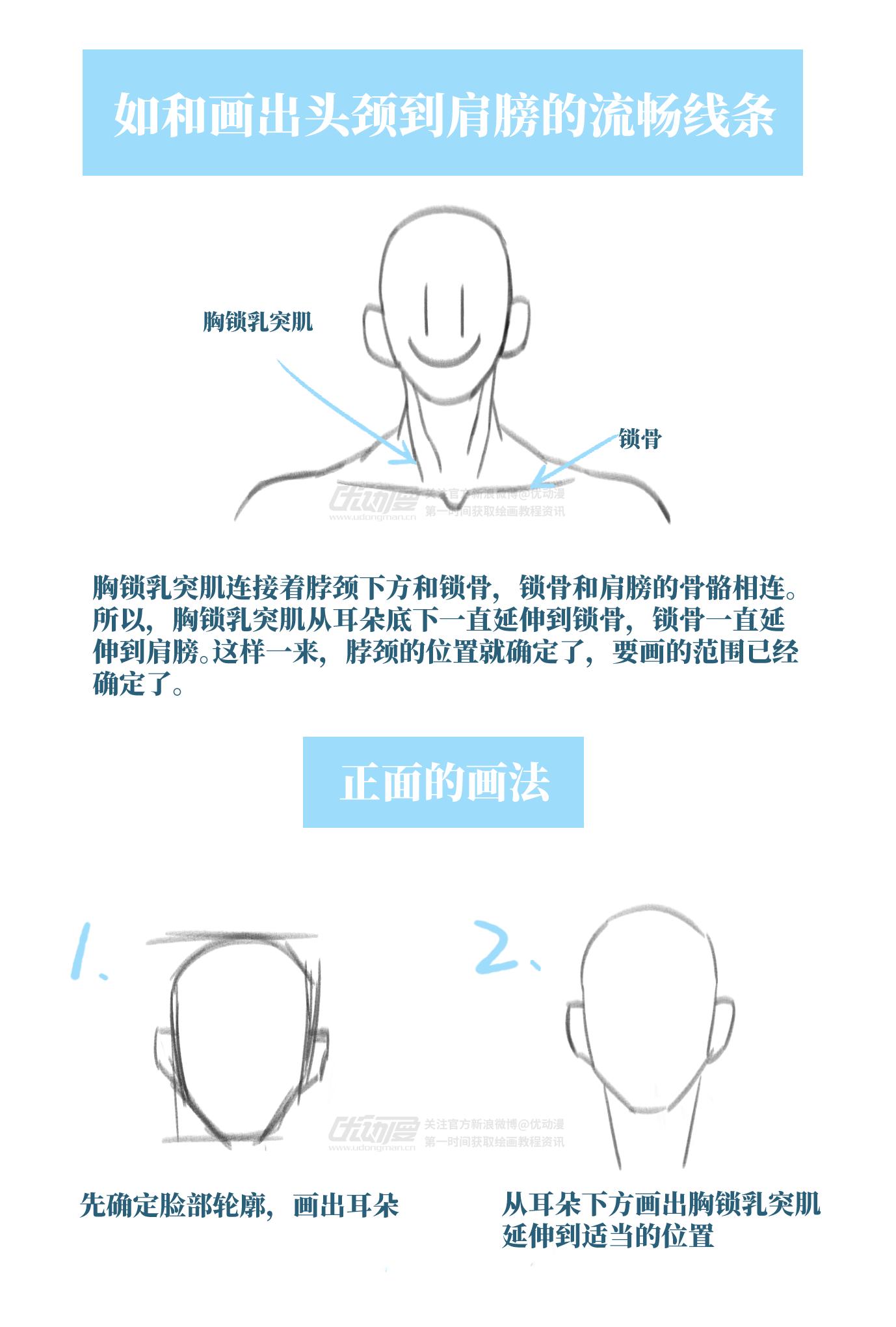如何画出头颈到肩膀的流畅线条1.png