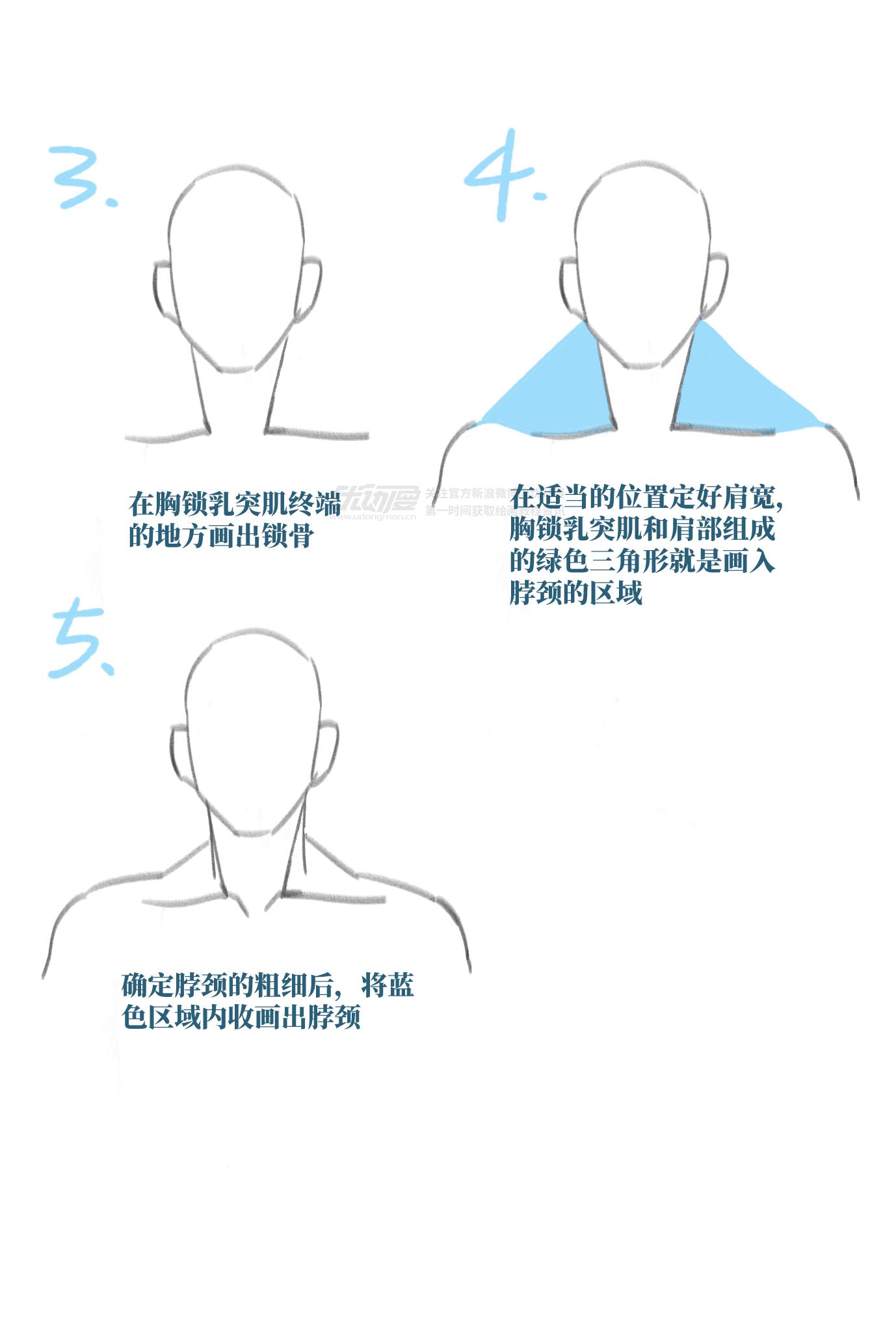 如何画出头颈到肩膀的流畅线条2.png