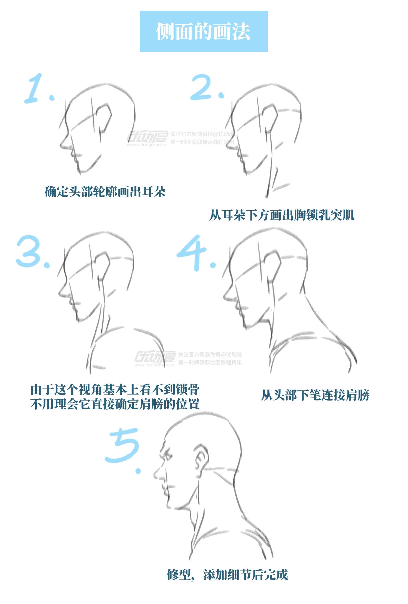 如何画出头颈到肩膀的流畅线条3.png