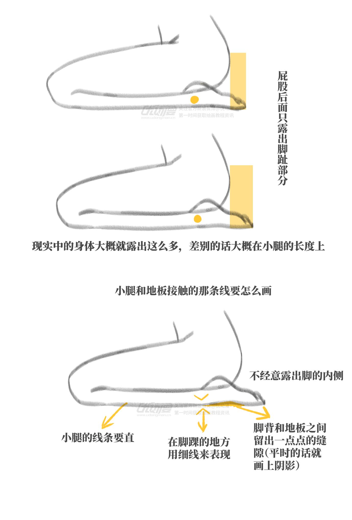 正坐时腿的画法4.png
